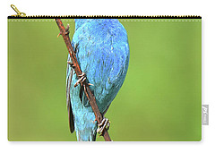 Indigo Bunting Carry-all Pouch by Alan Lenk