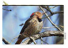Northern Flicker Woodpecker Carry-all Pouch by Robert L Jackson