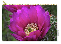 Carry-all Pouch featuring the photograph Pink Hedgehog Cactus  by Saija Lehtonen