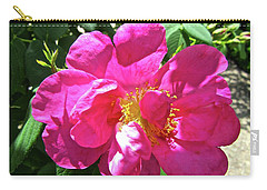 Carry-all Pouch featuring the photograph Pink Rose by Stephanie Moore
