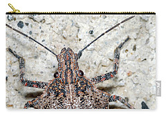 Stink Bug Carry-all Pouch