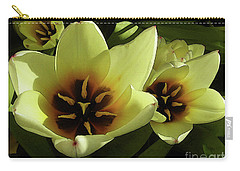 Tulip Lights #4 Carry-all Pouch