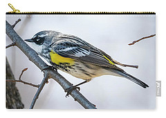 Carry-all Pouch featuring the photograph Yellow-rumped Warbler  by Ricky L Jones