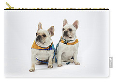 3010.062 Therapet Carry-all Pouch