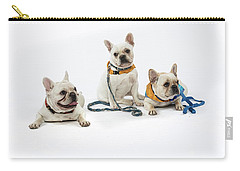 3010.064 Therapet Carry-all Pouch by M K  Miller