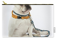 3010.068 Therapet Carry-all Pouch