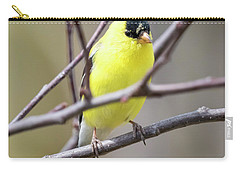 Carry-all Pouch featuring the photograph American Goldfinch  by Ricky L Jones