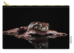 Australian Green Tree Frog, Or Litoria Caerulea Isolated Black Background Carry-all Pouch by Sergey Taran