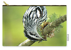 Black And White Warbler Carry-all Pouch by Alan Lenk