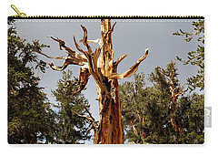 Bristlecone Pine Tree 1 Carry-all Pouch