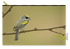 Golden-winged Warbler Carry-all Pouch by Alan Lenk