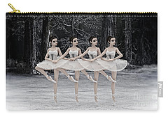 4 Little Swans Carry-all Pouch by Methune Hively