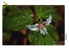 Carry-all Pouch featuring the photograph Painted Trillium  by Thomas R Fletcher
