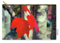 Red Carry-all Pouch by Ronda Broatch