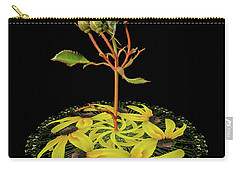 Carry-all Pouch featuring the photograph 4407 by Peter Holme III