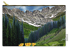 Carry-all Pouch featuring the photograph 4415 by Peter Holme III