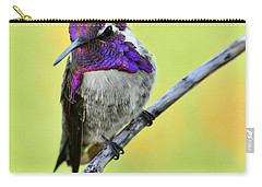 Costas Hummingbird  Carry-all Pouch