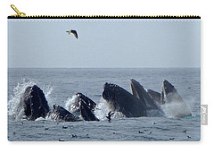 5 Humpbacks Lunge Feeding  Carry-all Pouch