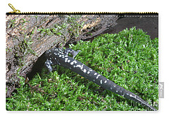 Slimy Salamander Carry-all Pouch by Ted Kinsman