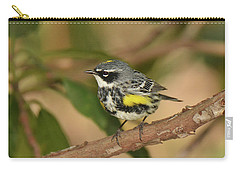 Yellow-rumped Warbler Carry-all Pouch by Alan Lenk