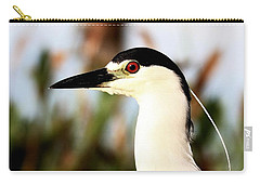 Black Crowned Night Heron Carry-all Pouch