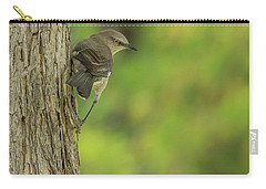 Carry-all Pouch featuring the photograph Mockingbird by Tam Ryan