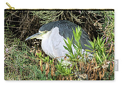 Carry-all Pouch featuring the photograph Black-crowned Night Heron by Tam Ryan