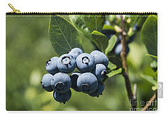 Blueberry Bush Carry-all Pouch