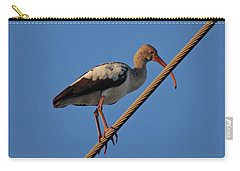 Carry-all Pouch featuring the photograph 8- Brown Ibis by Joseph Keane