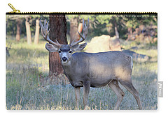 Carry-all Pouch featuring the photograph 8x8 Mule Deer by Shane Bechler