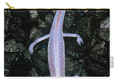 Austin Blind Salamander Carry-all Pouch
