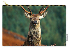 Red Deer Stag Carry-all Pouch