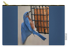 Carry-all Pouch featuring the photograph A Bluebird's Meal On The Wing by Jim Moore
