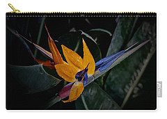 A Bright Blooming Bird Carry-all Pouch by Tim Good