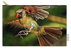 A Cardinal Approaches Carry-all Pouch