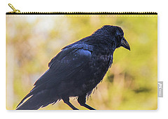 Carry-all Pouch featuring the photograph A Crow Looks Away by Jonny D