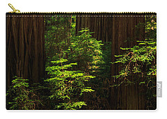 A Deer In The Redwoods Carry-all Pouch by James Eddy