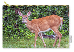 A Deer Young Lady Carry-all Pouch