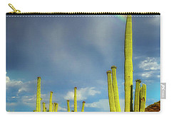 Carry-all Pouch featuring the photograph A Divine Touch by Rick Furmanek