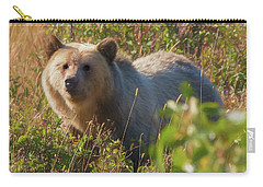 A  Female Grizzly Bear Looking Alertly At The Camera. Carry-all Pouch