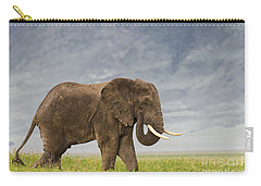 Carry-all Pouch featuring the photograph A Gentle Giant by Sandra Bronstein
