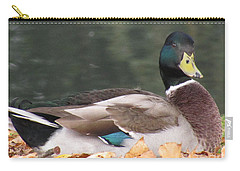 A Handsome Mallard Carry-all Pouch
