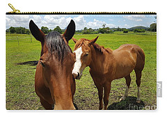 A Horse's Touch Carry-all Pouch
