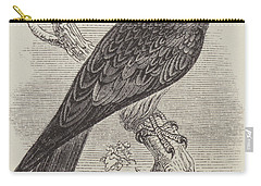 A Kite Carry-all Pouch by English School