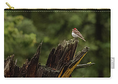 A Male Purple Finch In Spring Carry-all Pouch
