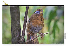 Carry-all Pouch featuring the photograph A Melodious Thrush by Judy Kay
