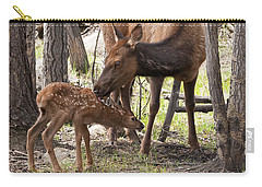 A Mothers Love Carry-all Pouch