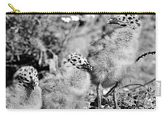 Carry-all Pouch featuring the photograph 3 Amigos by John F Tsumas
