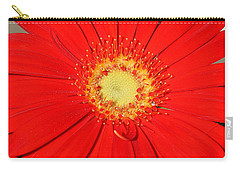 Carry-all Pouch featuring the photograph A Red Explosion by Sheila Brown