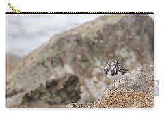 A Ruddy Turnstone Perched On The Rocks Carry-all Pouch